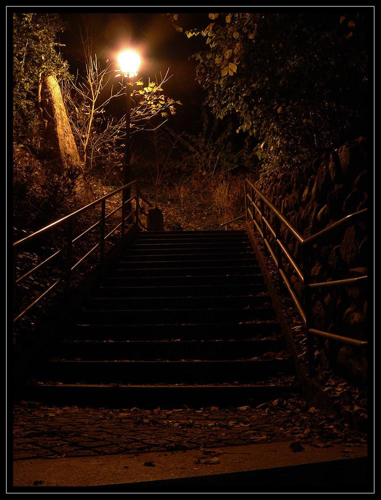 Herbsttreppe bei Nacht