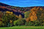 Herbstwald am Happurger Stausee (HDR)
