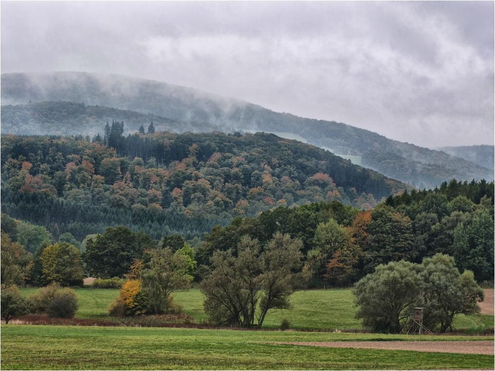 Herbstwald bei Usingen