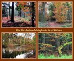 Herbstwaldklänge