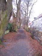 Herbstwall