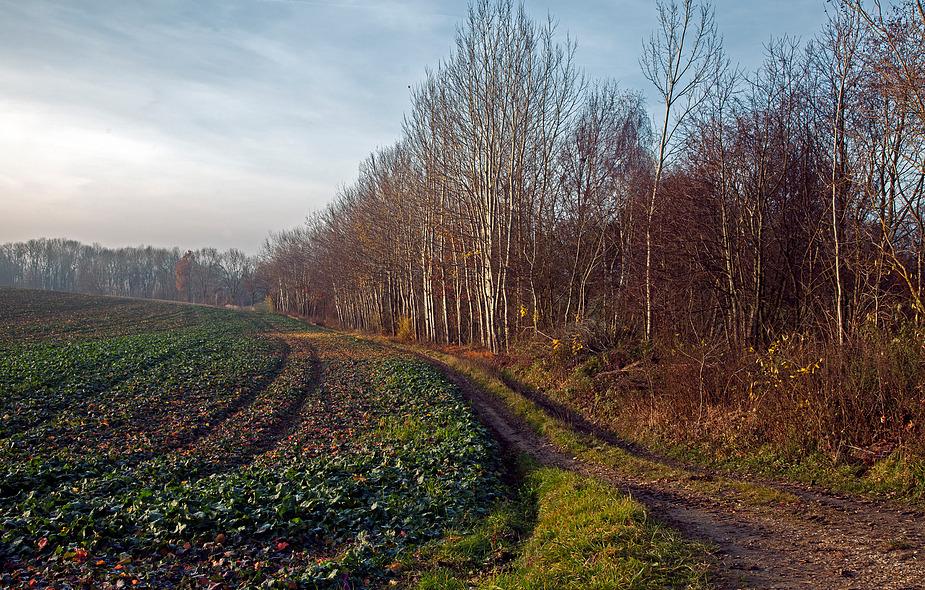 Herbstwanderung-1