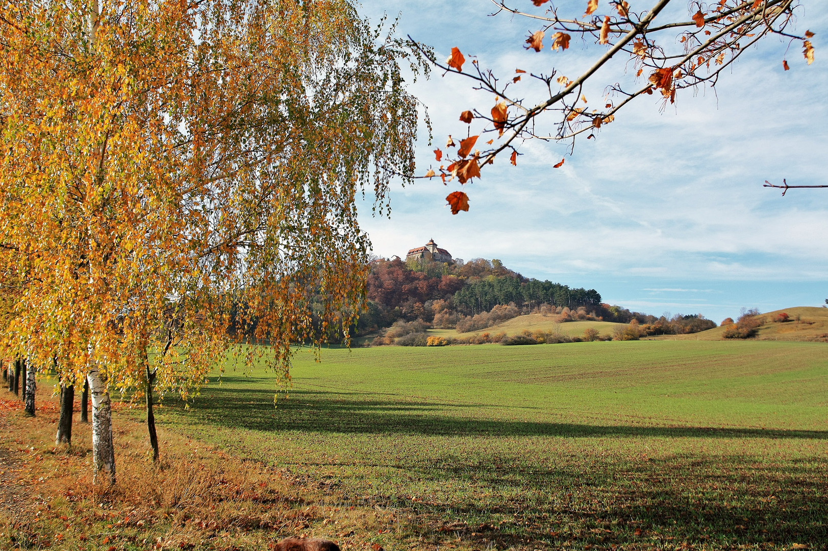 Herbstwanderung 2