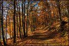 ~Herbstwanderung~