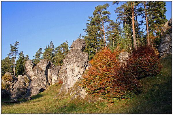 Herbstwanderung durch das Wental (1) ...