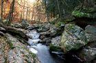 Herbstwasser #3