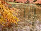 Herbstwasser III