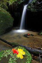 Herbstwasserfall