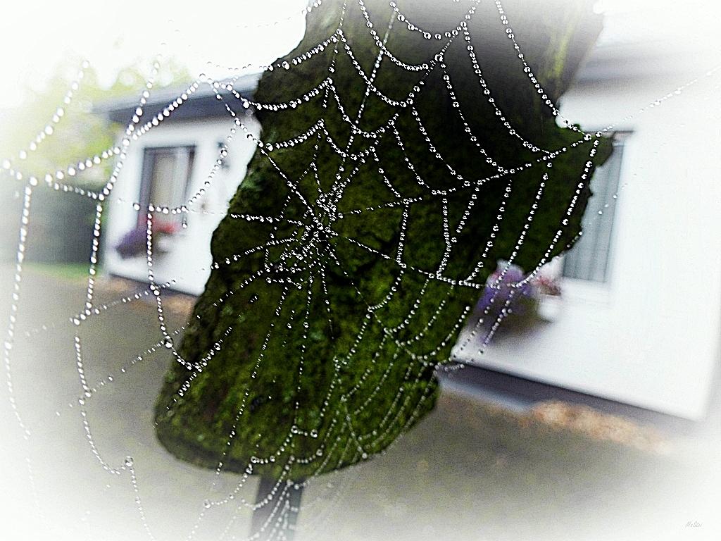 Herbstweben
