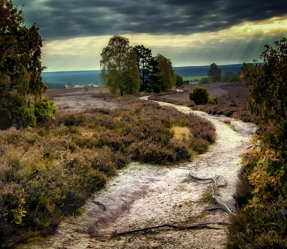 Herbstweg2