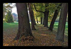 Herbstwege - 2