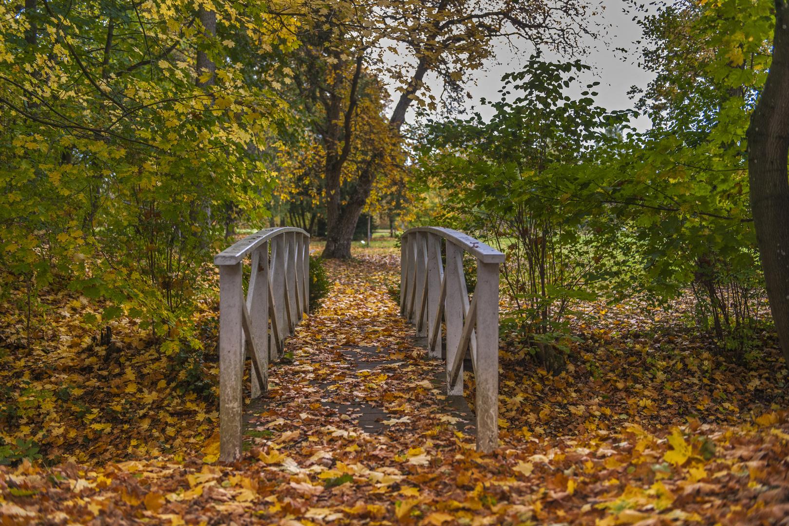 Herbstwege in Vorpommern
