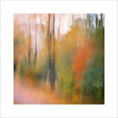 Herbst.wusch