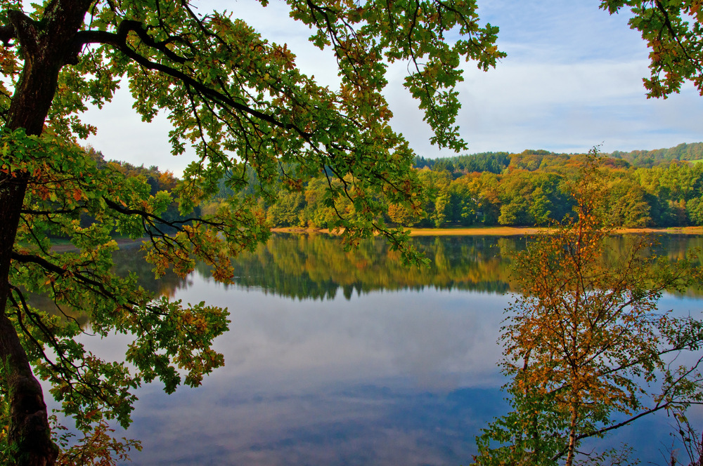 Herbstzeit 2