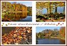 Herbstzeit von - Edith Vogel