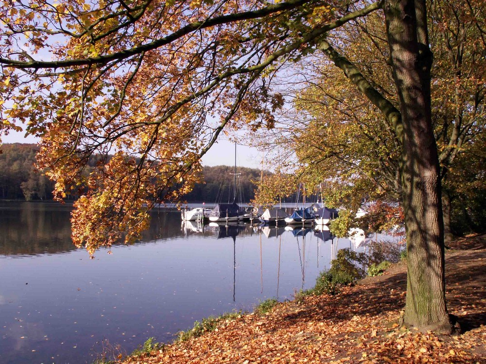 Herbstzeit am See...
