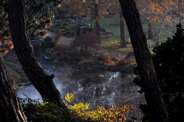 Herbstzeit Buntes Laub