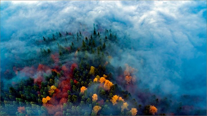 Herbstzeit ist Nebelzeit
