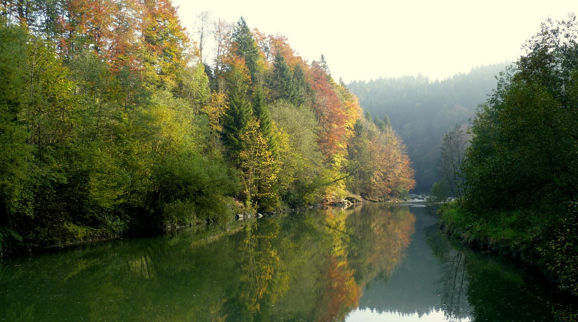 Herbstzeit / la otoñada / l'automne..05