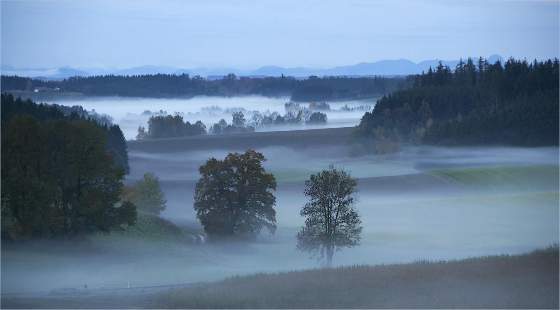 Herbstzeit - Nebelzeit