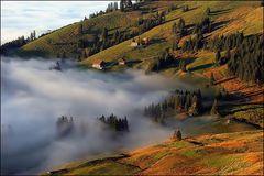 Herbstzeit ...Nebelzeit...