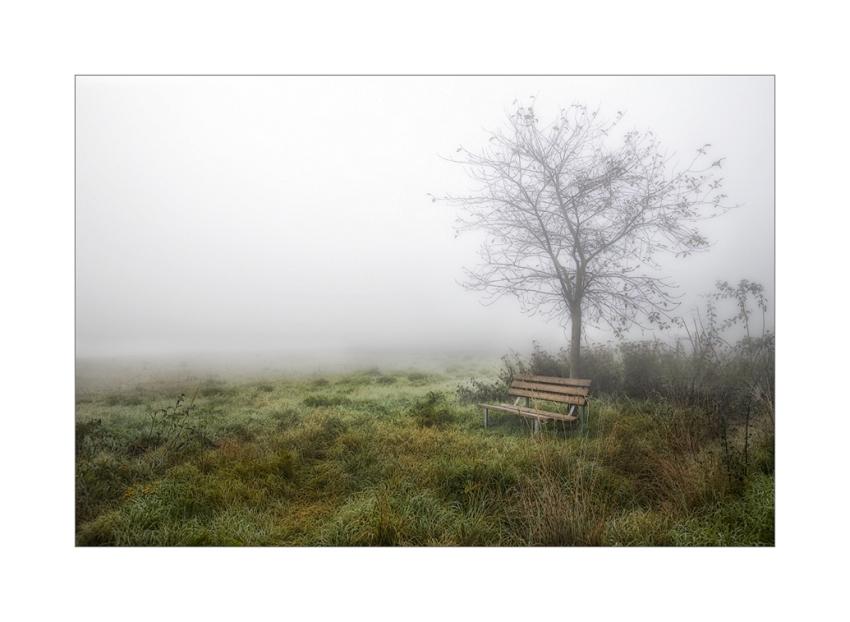 Herbstzeit VIII: Melancholie