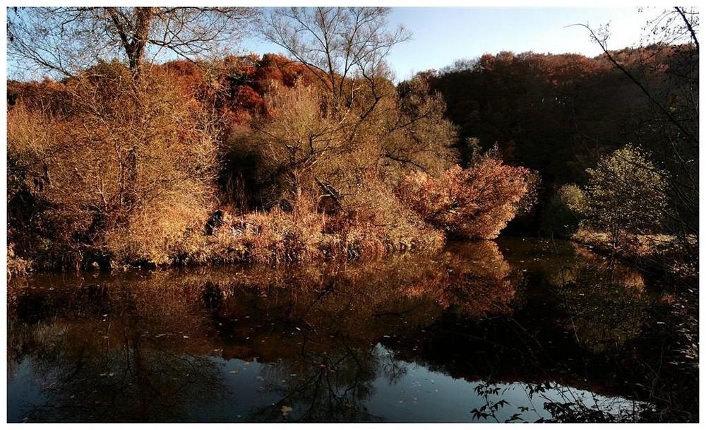Herbstzeit.....2