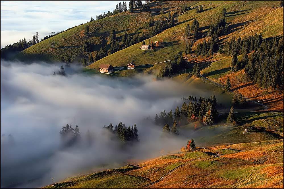 Herbstzeit...nebelzeit