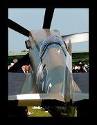 Here Majesty The Spitfire Mk XIX