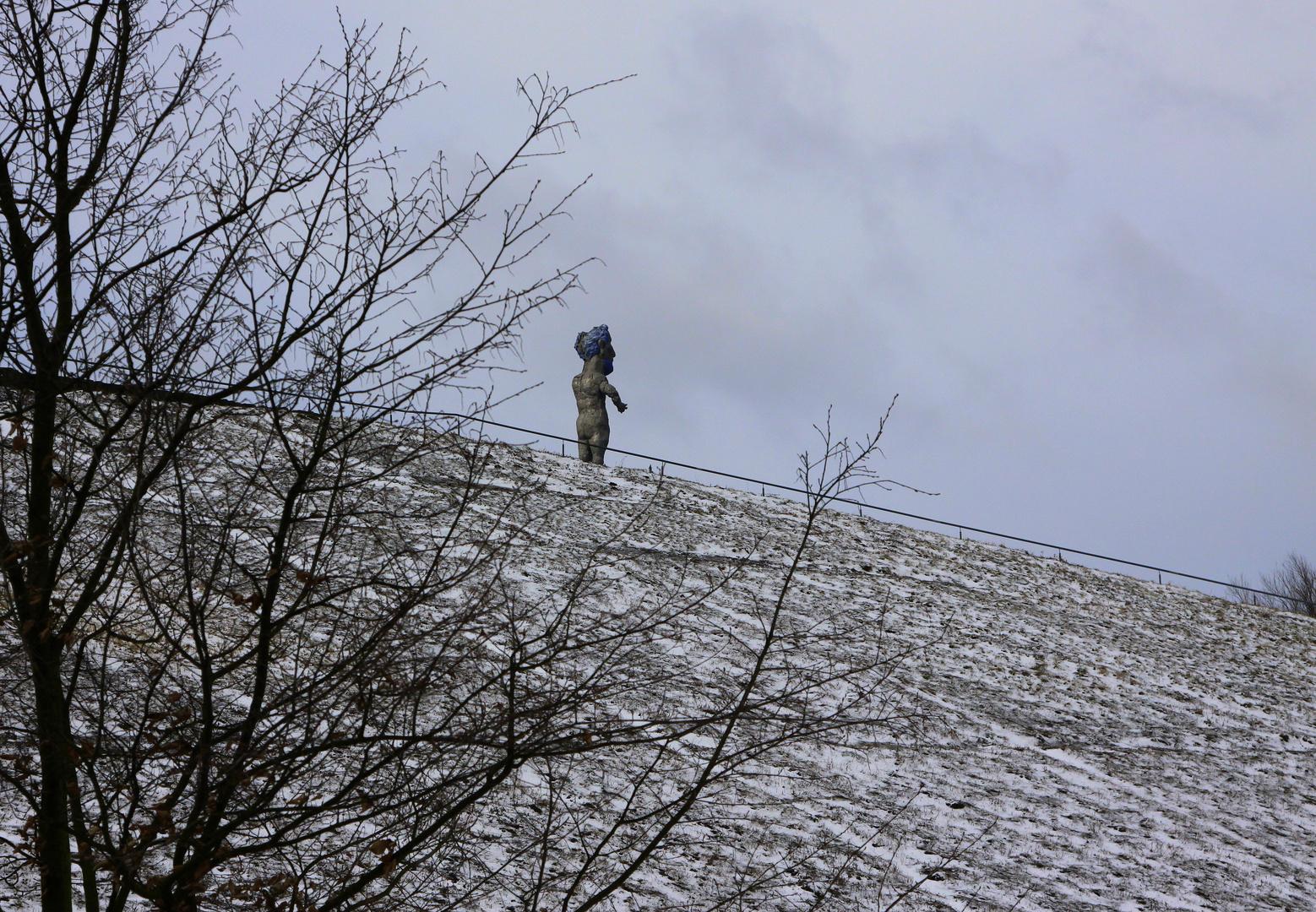 Herkules beim Winterspaziergang