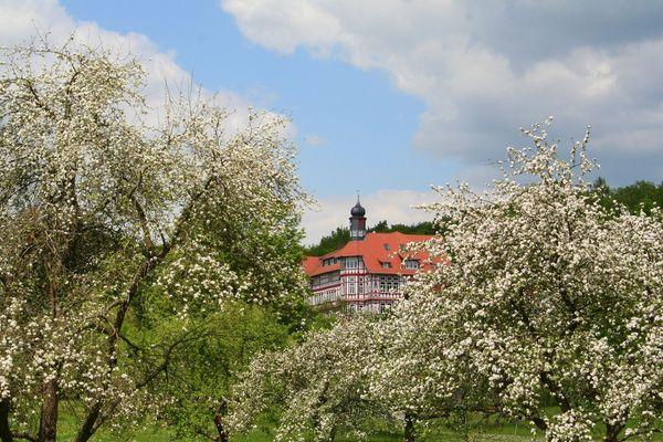 Hermann-Lietz -Schule-Haubinda 3