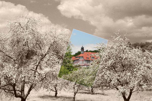 Hermann-Lietz -Schule-Haubinda 5