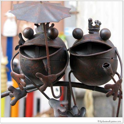 Herr & Frau Frosch