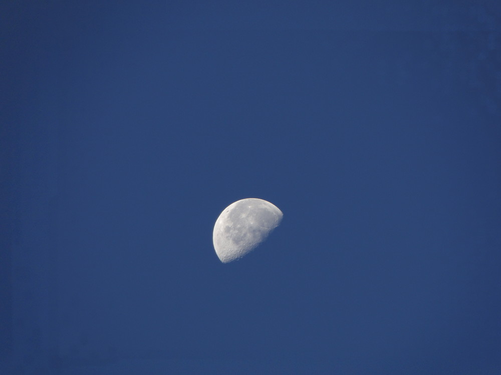 Herr Mond