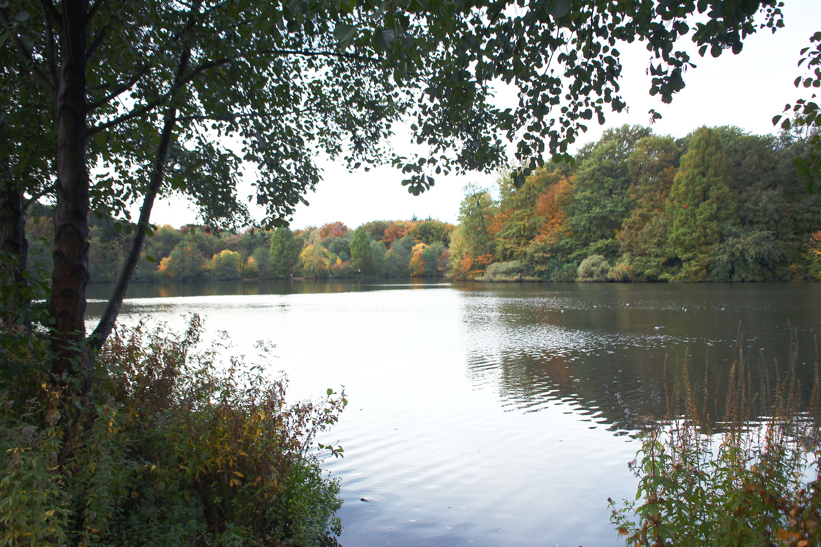 Herrbst am See