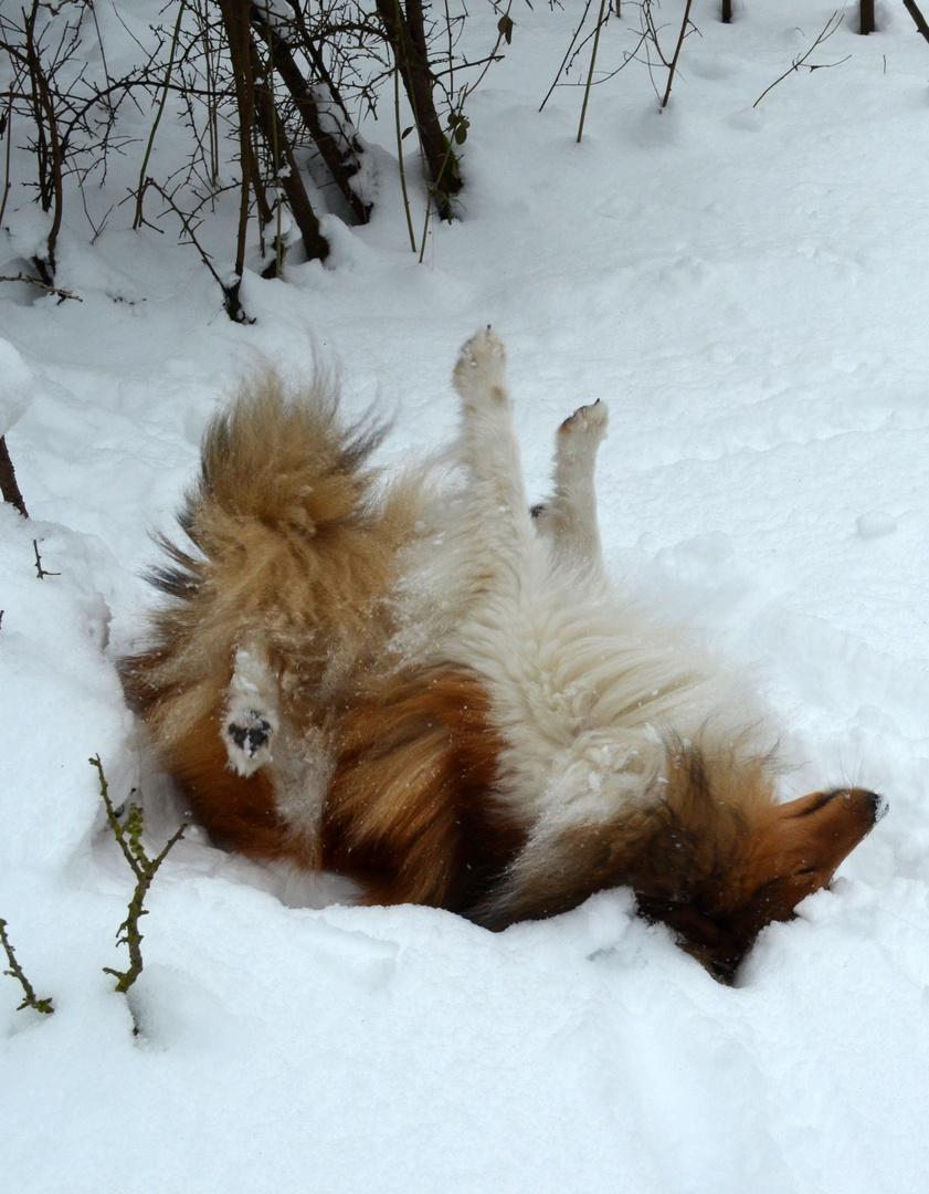 Herrlich der Schnee