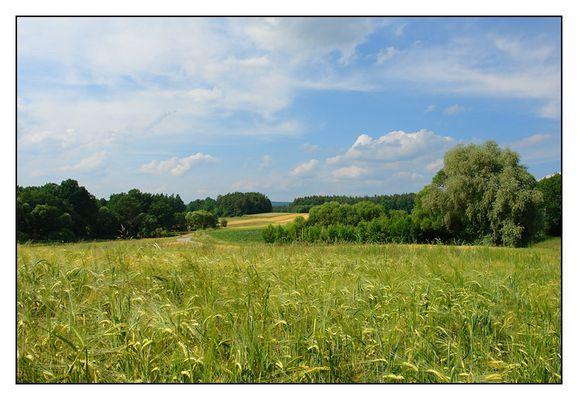 Hersbrucker Land I