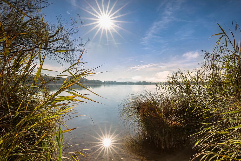 Herstmorgen am Tachinger See