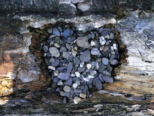 herz aus steinen