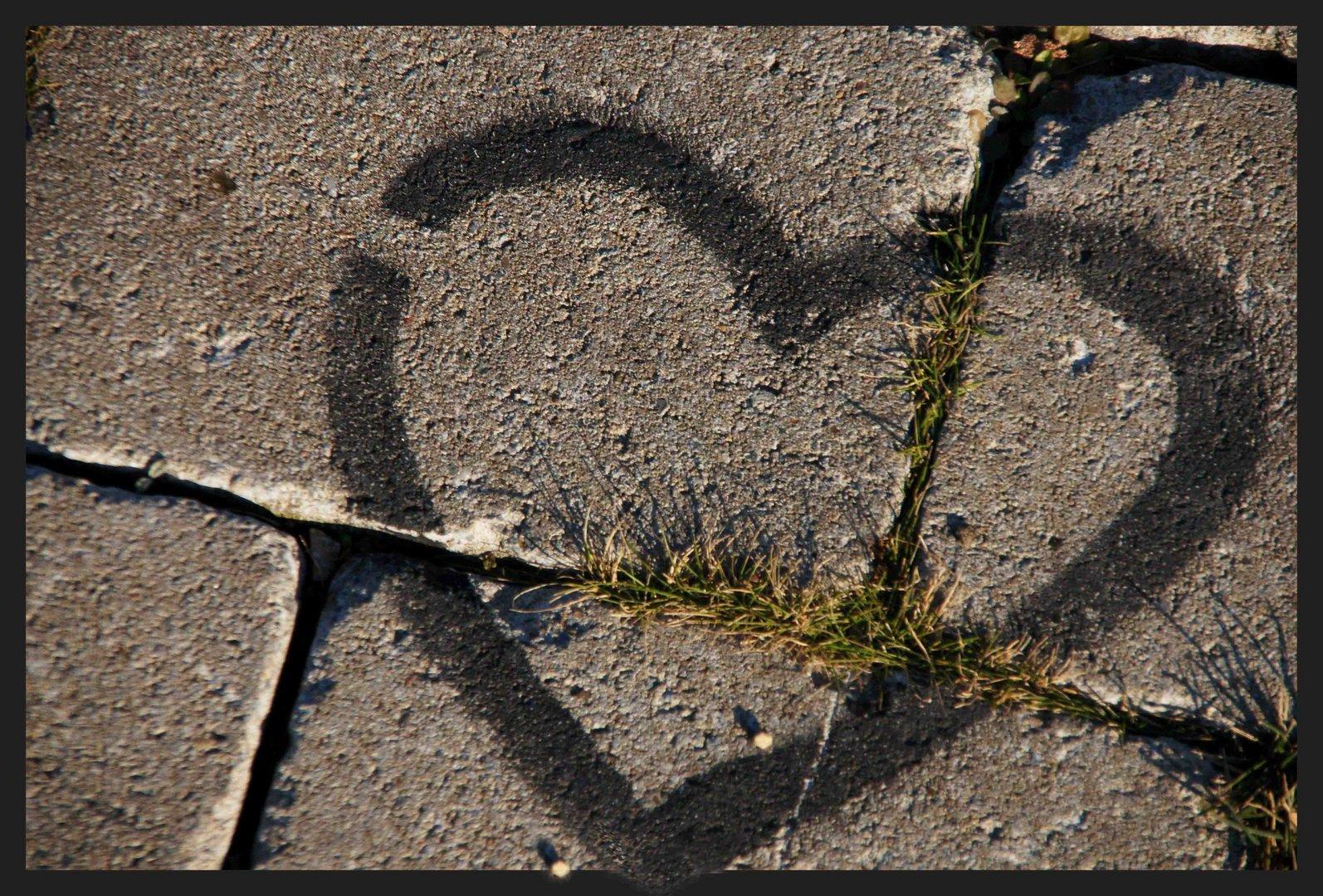 Herz für Freunde-24 oder wo die Liebe hinfällt, wächst kein Gras mehr...