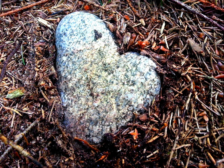 Herz gefunden
