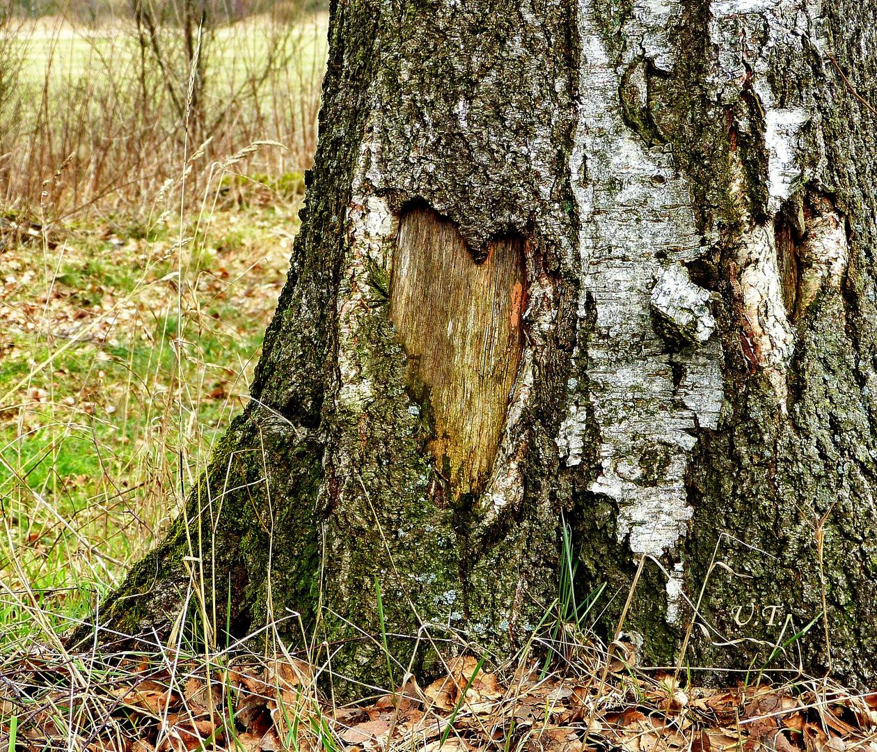 Herz gefunden # 3