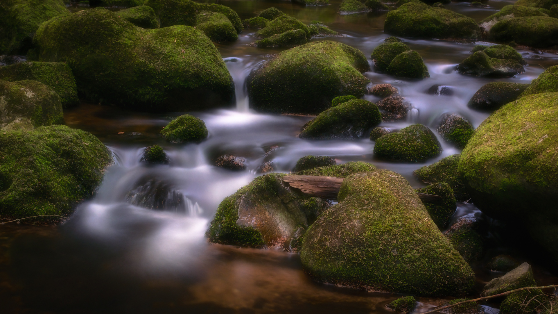 - Herz im Fluss -