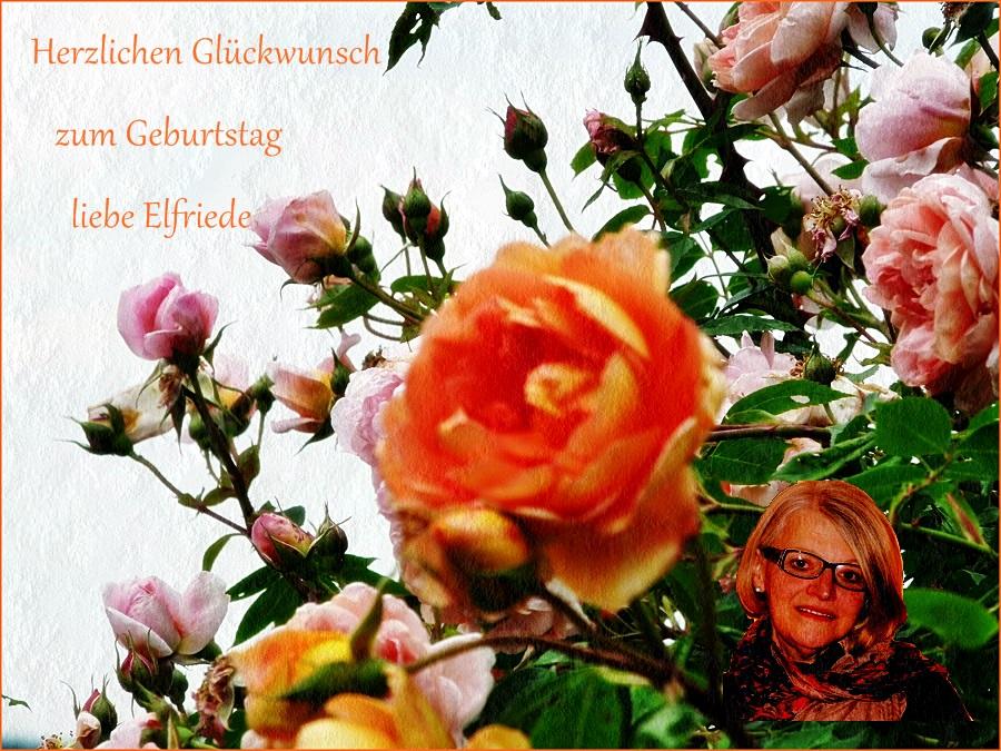 Herzlichen Glückwunsch liebe Elfriede