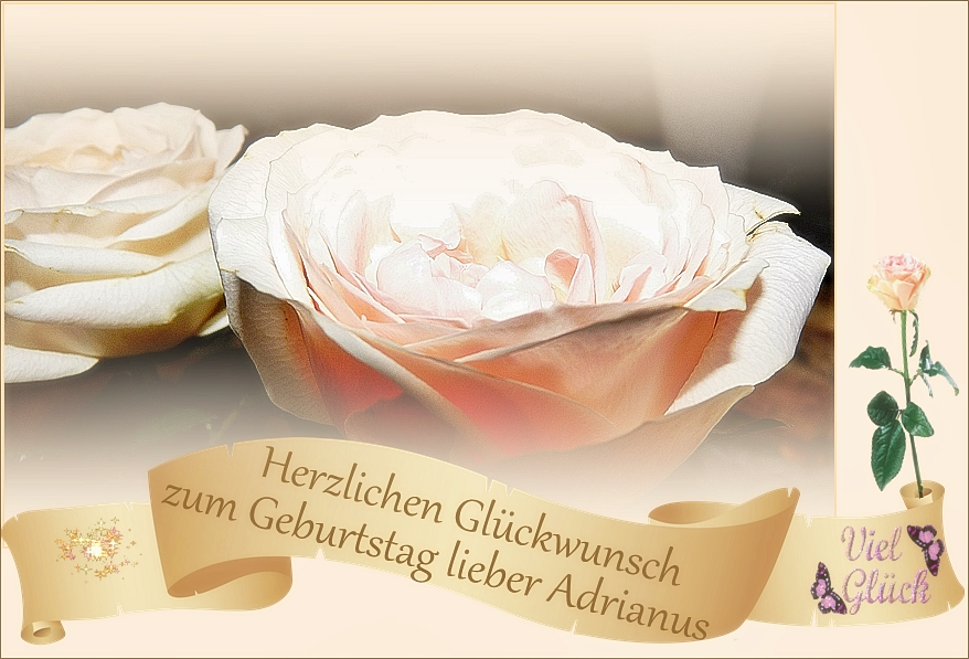 Herzlichen Glückwunsch lieber Adrianus