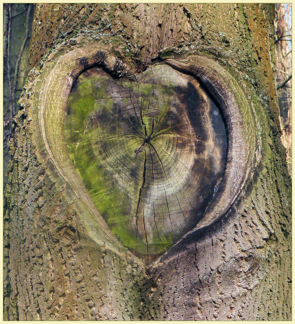 Herzlicher Baum