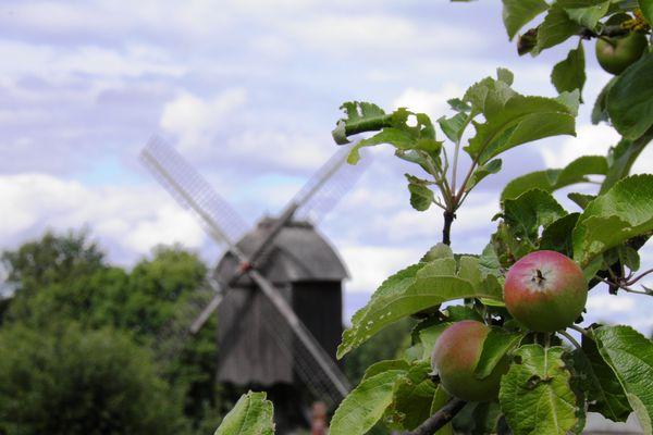 Hessenpark - Mühle
