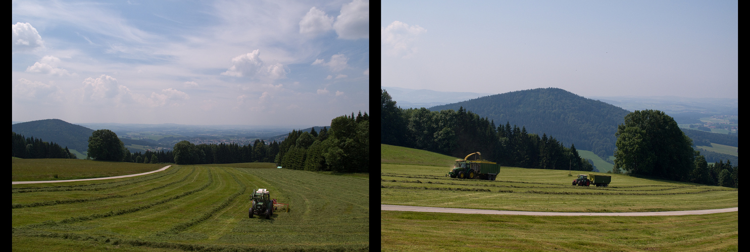 Heuernte im Bayerischen Wald