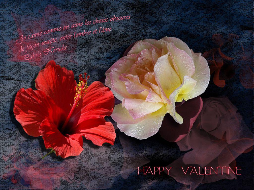 Heureuse St Valentin !