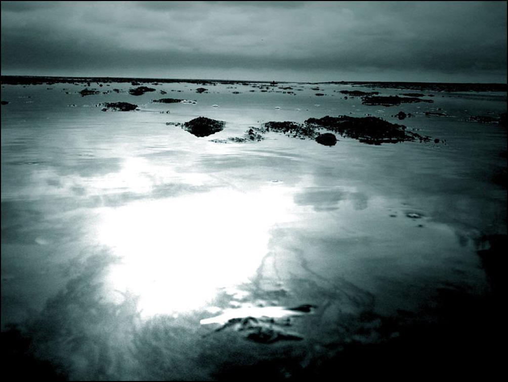 Heut bin ich über Rungholt gelaufen, die versunkene Stadt im Wattenmeer